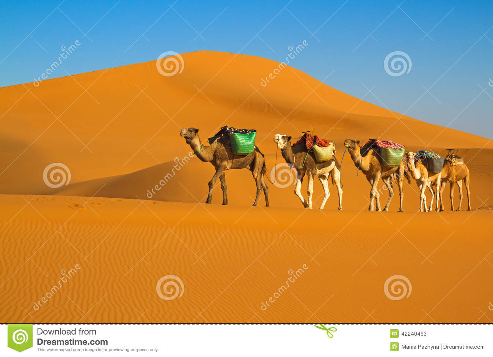 Caravane de désert