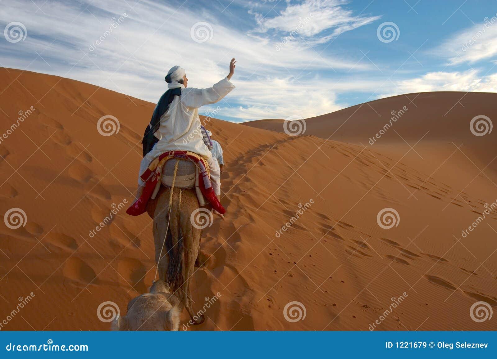 Caravane des touristes dans le désert