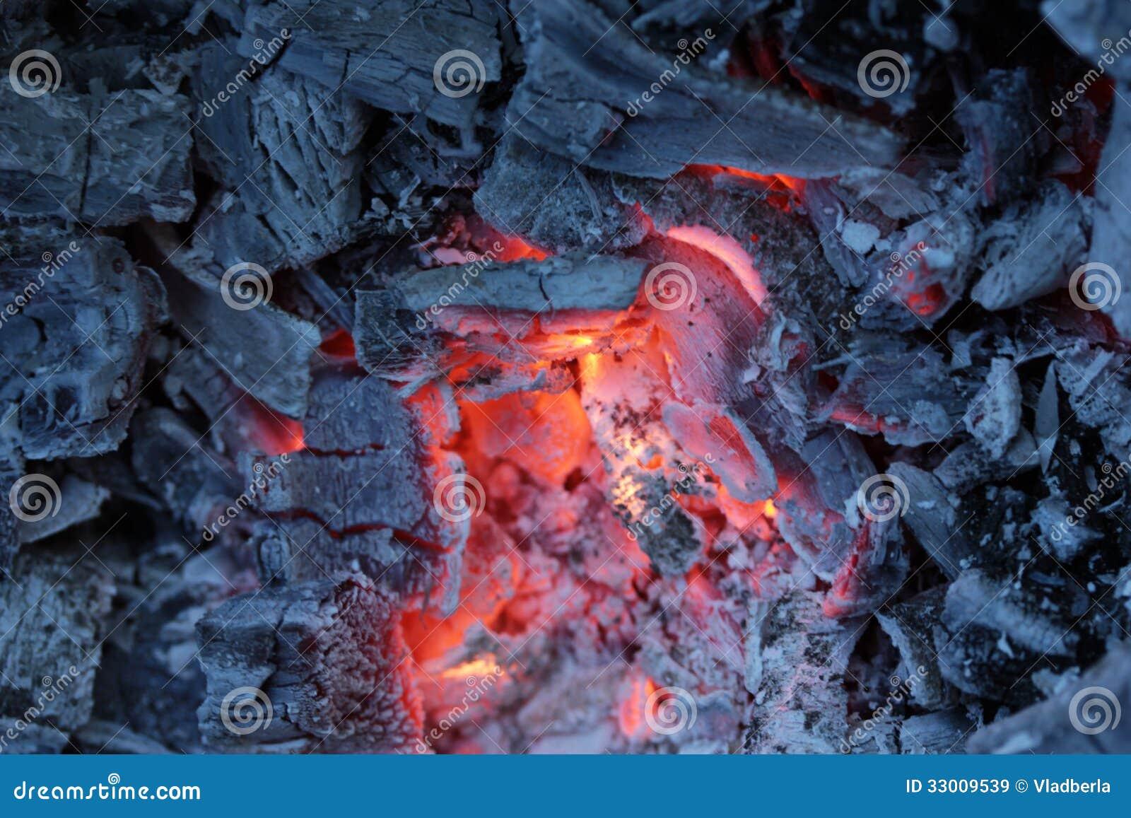 Carbones vivos