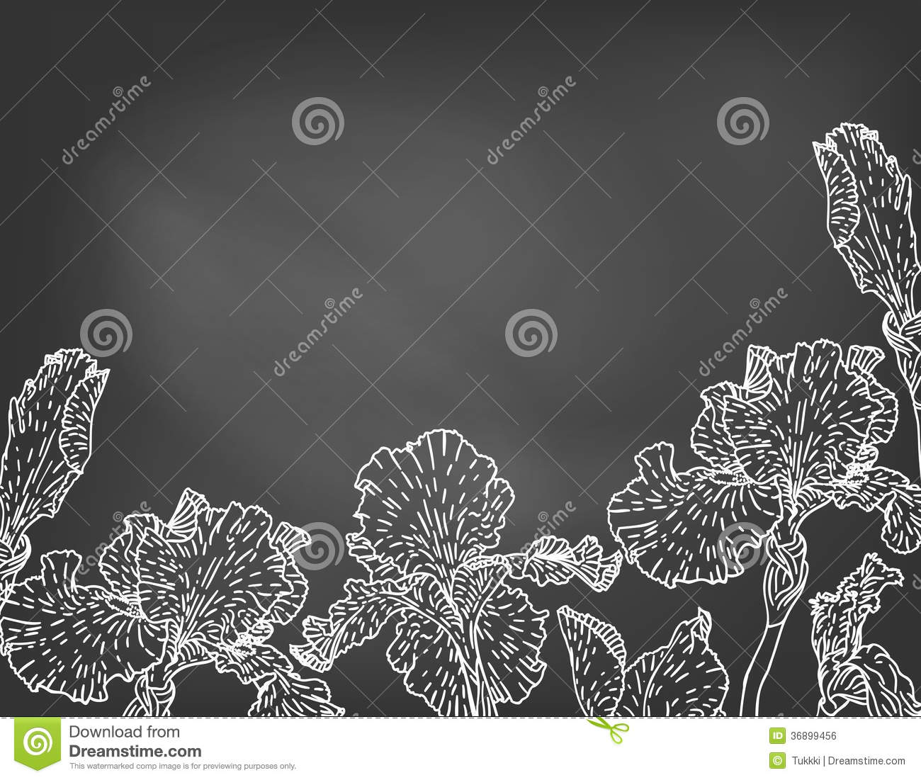 Card With Hand Drawn Iris Flowers On Chalkboard Stock Vector