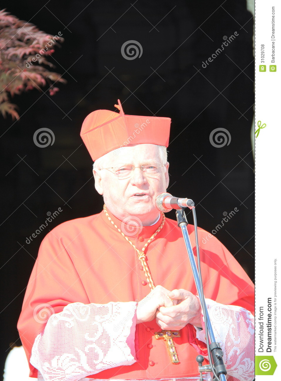 foto cardinale angelo scola milan - photo#19