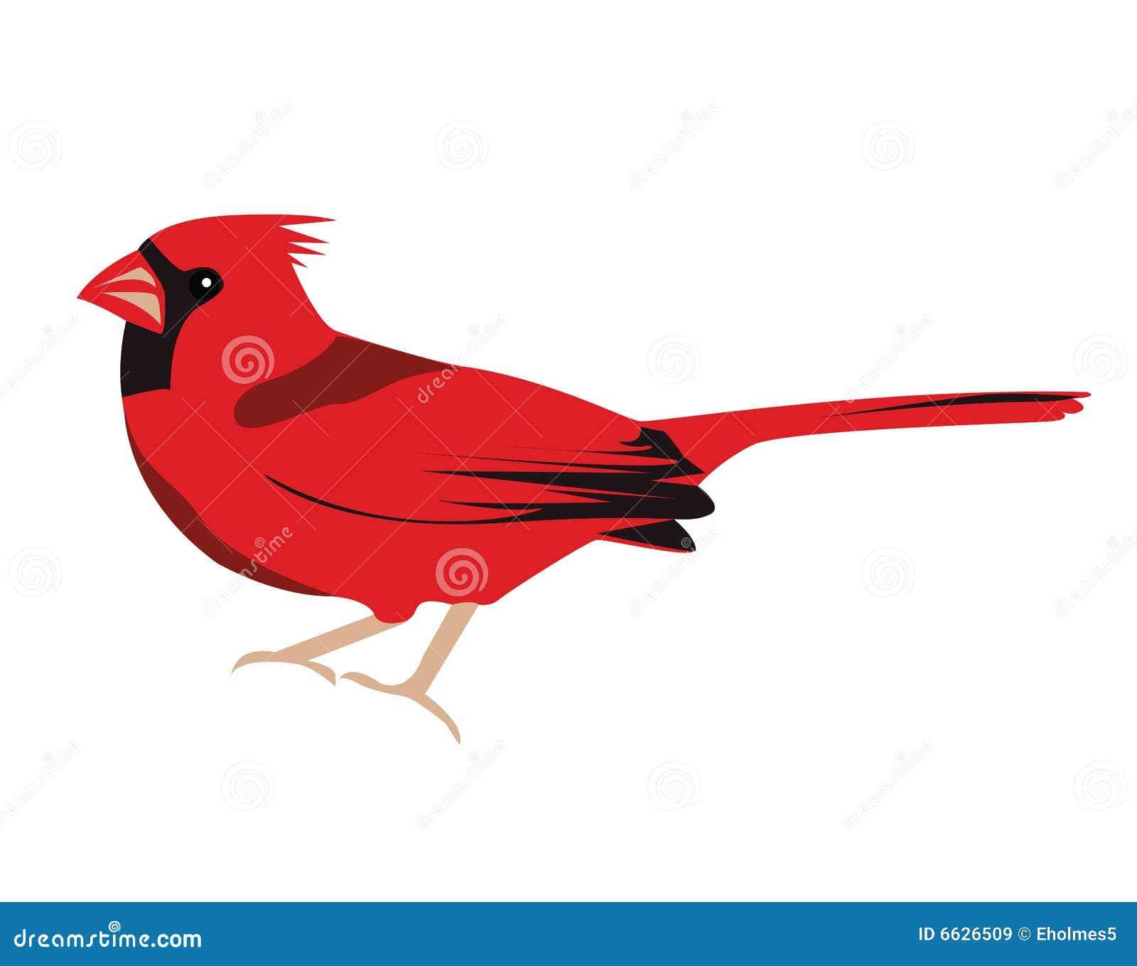 Cardinal Bird Royalty Free Stock Images - Image: 6626509