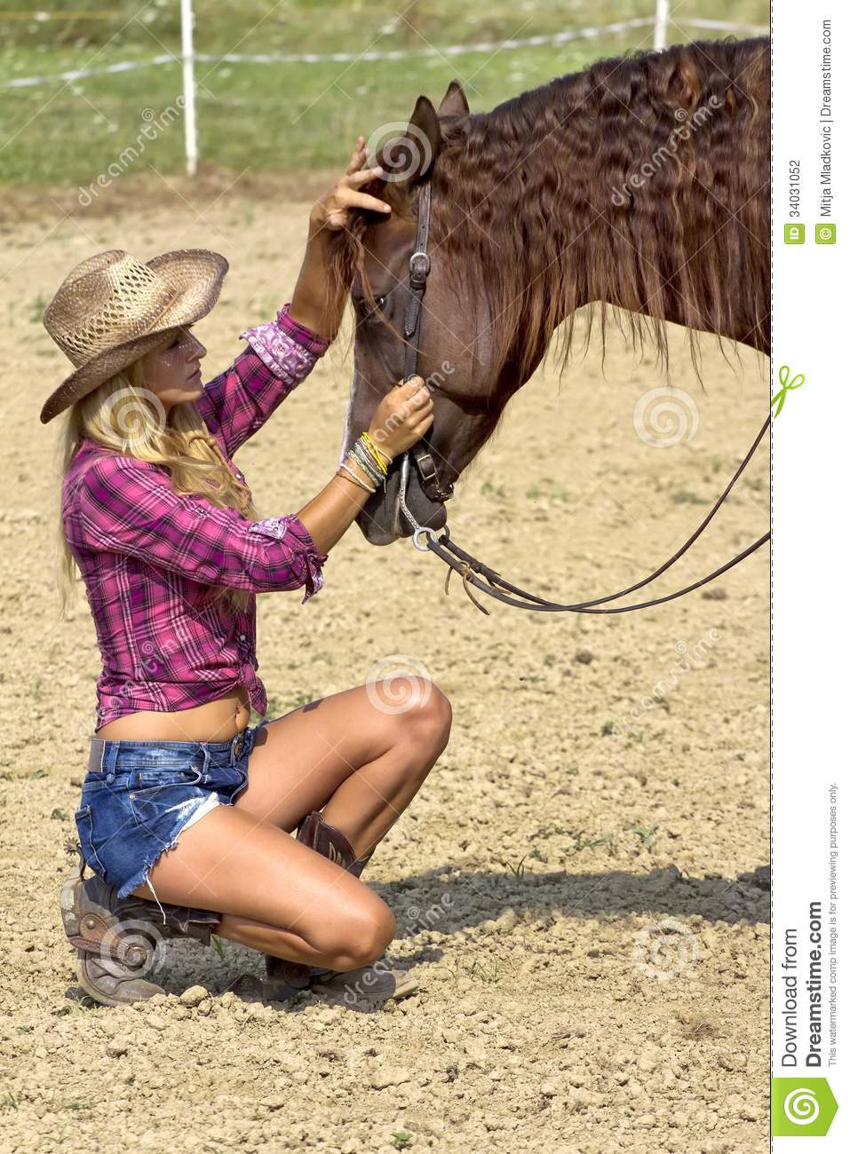 Caressing The Horse Stock Photography - Image: 34031052