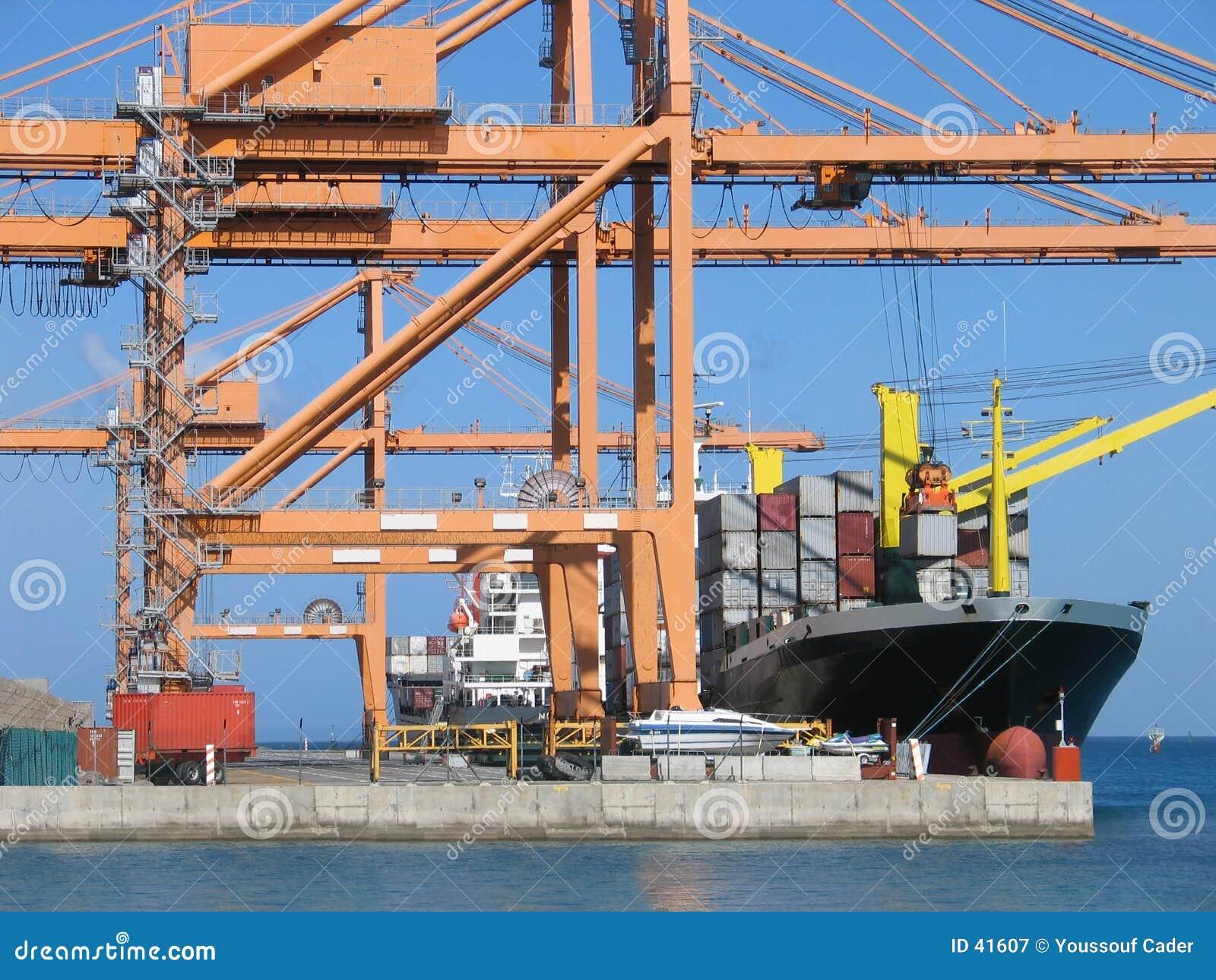 Cargo Series 5