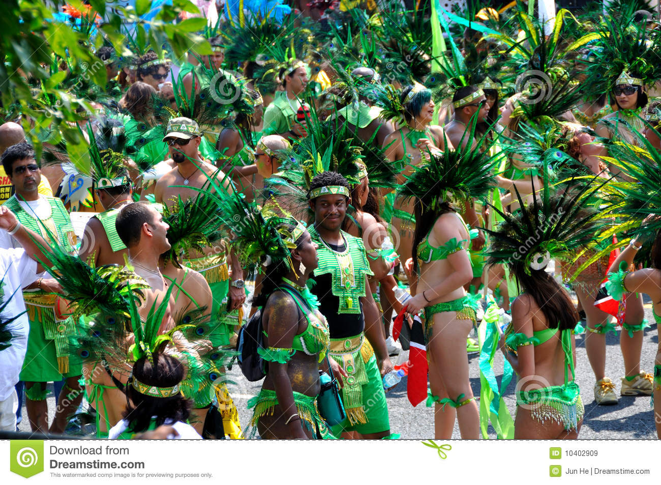 Caribana Revelers editorial stock image  Image of color - 10402909