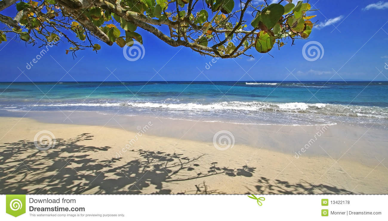 Caribbean Beach Scenes: Caribbean Beach Scene Royalty Free Stock Photos