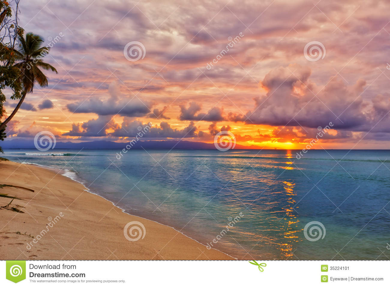 Vibrant Caribbean: Caribbean Beach Sunset Stock Image. Image Of Sunset, Tree