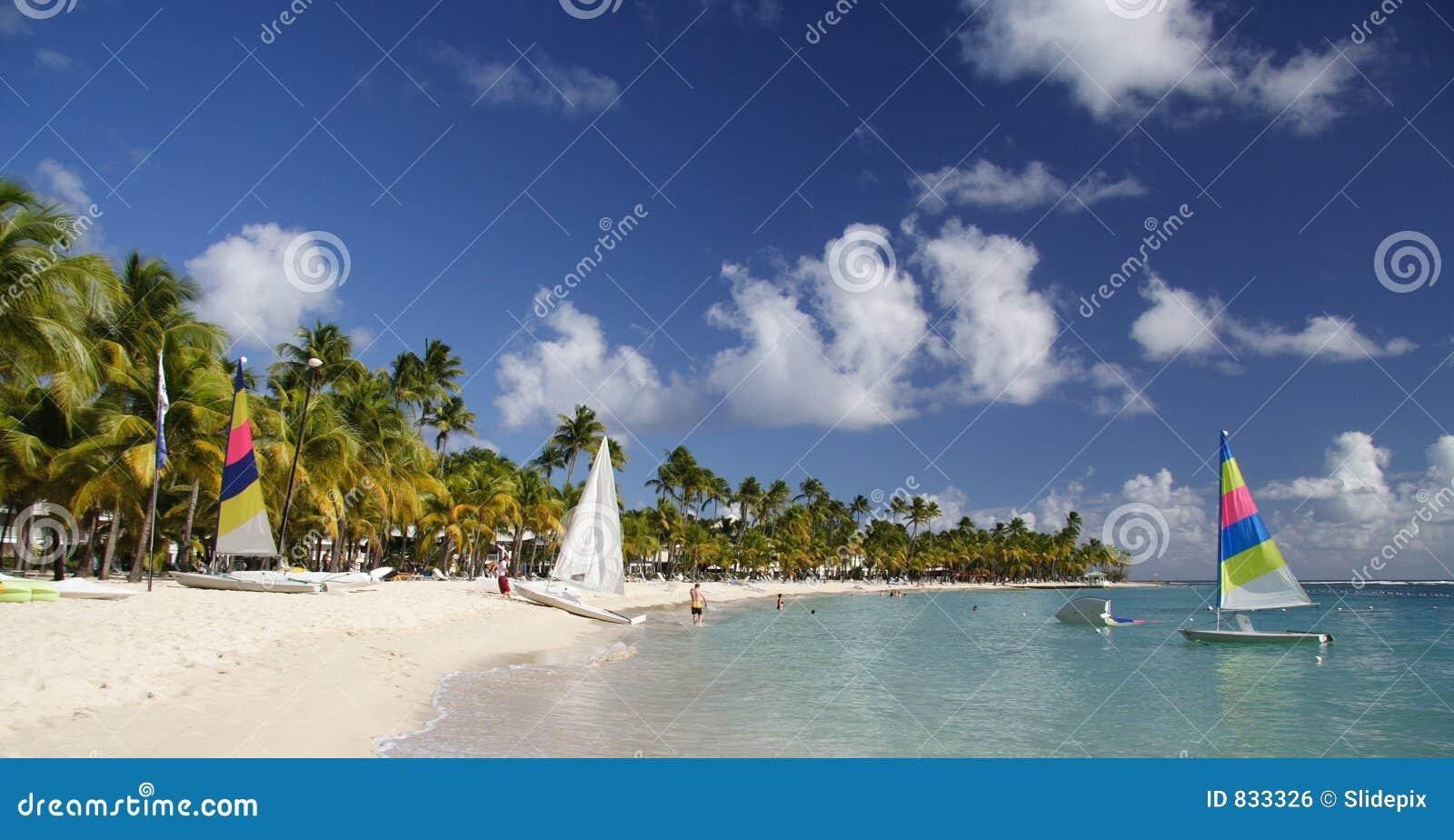 Caribbean Beachlife