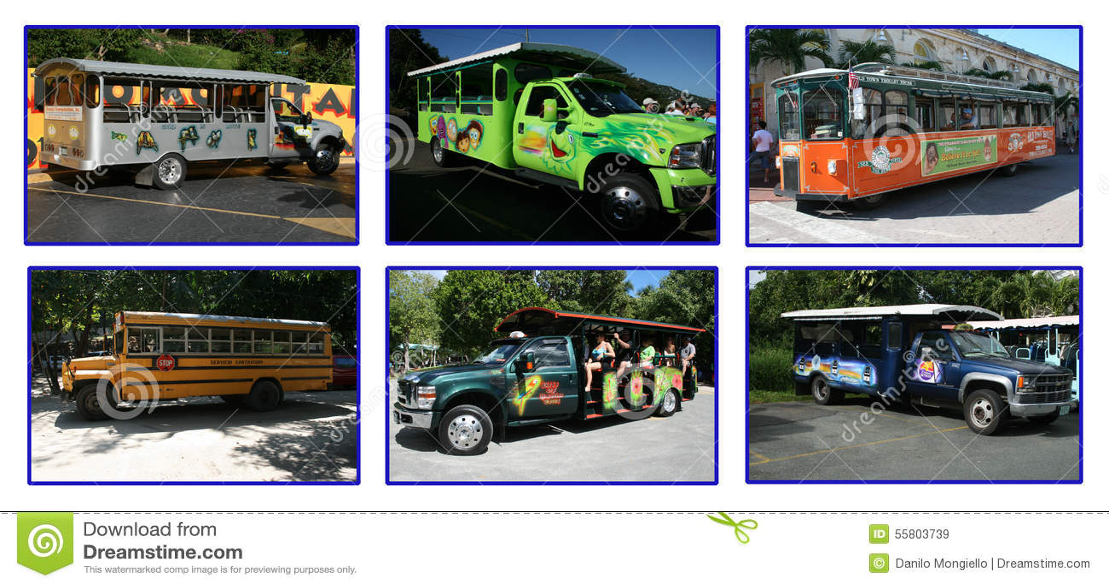 Caribbean buses