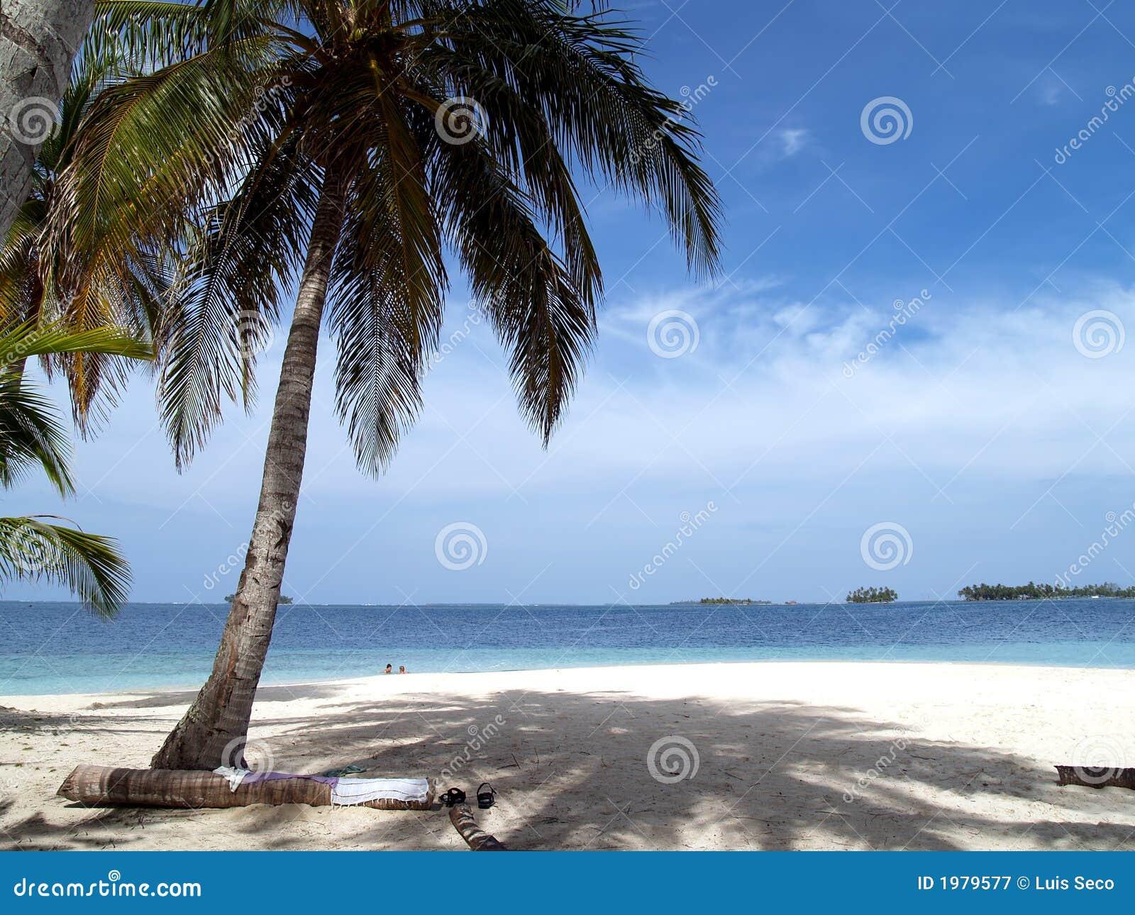 Caribbean tropical white sand beach