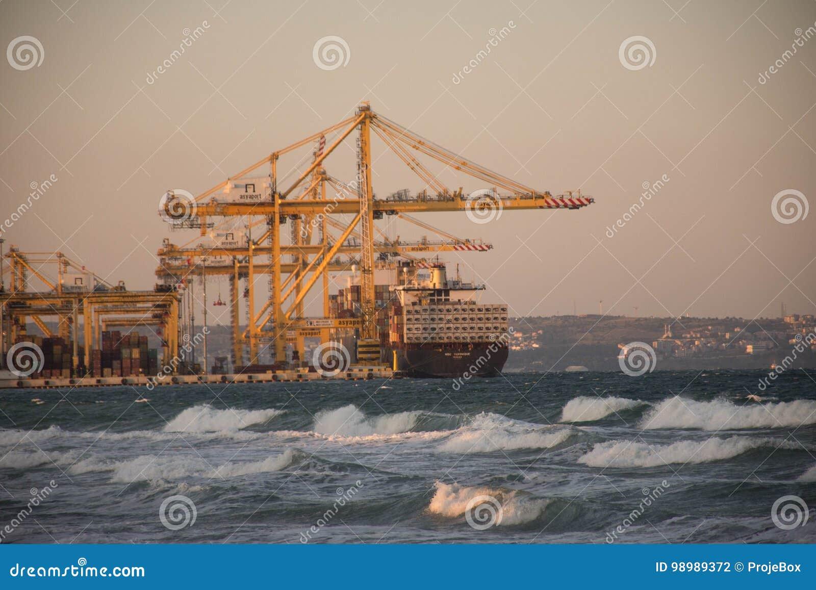 Carico delle navi da carico