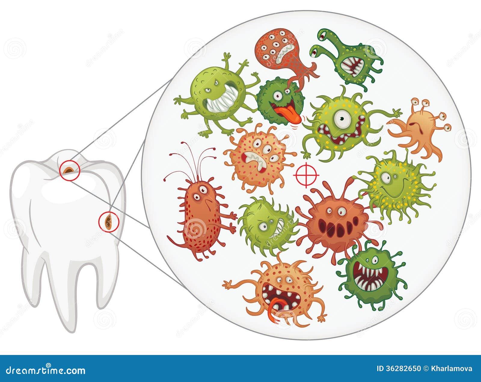 Carie. Bactéries et dent drôles