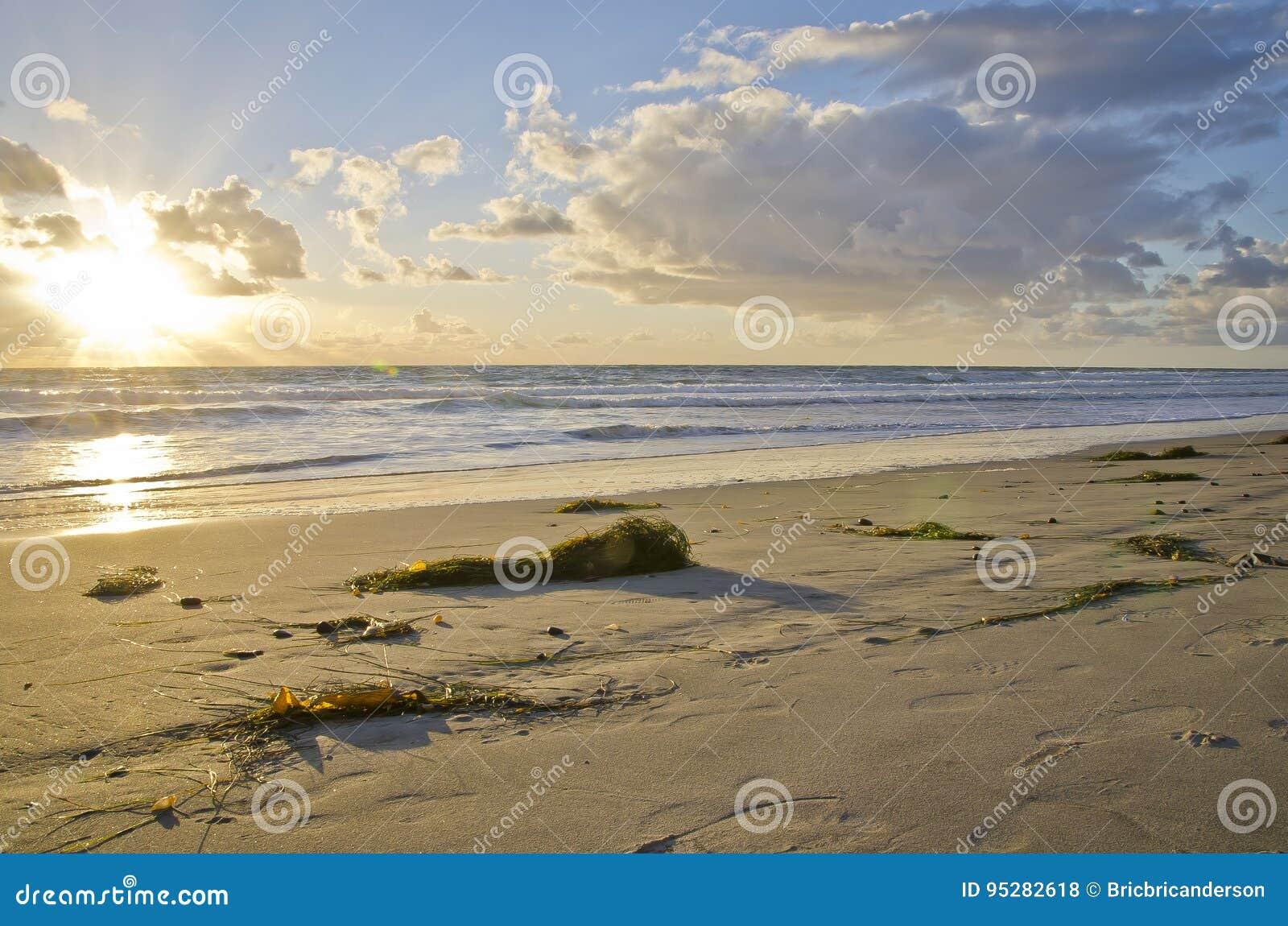 Carlsbad strand