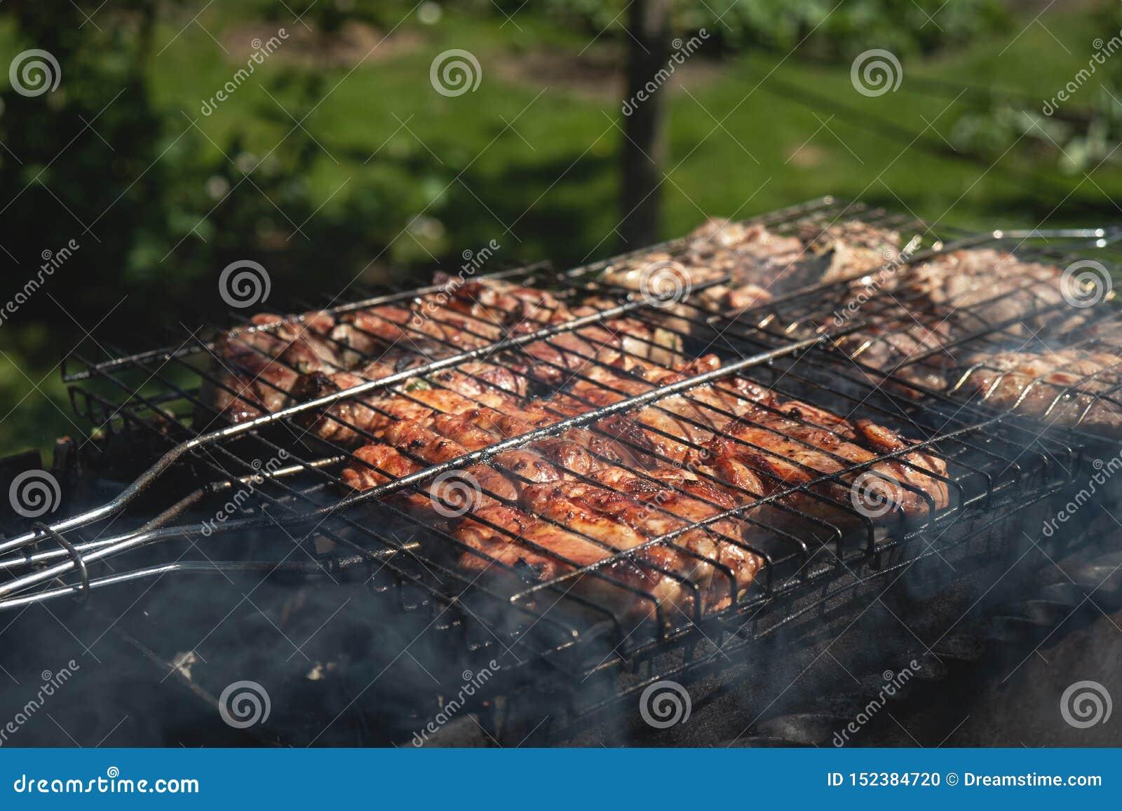A carne de porco grelhada é cozinhada fora, piquenique do verão