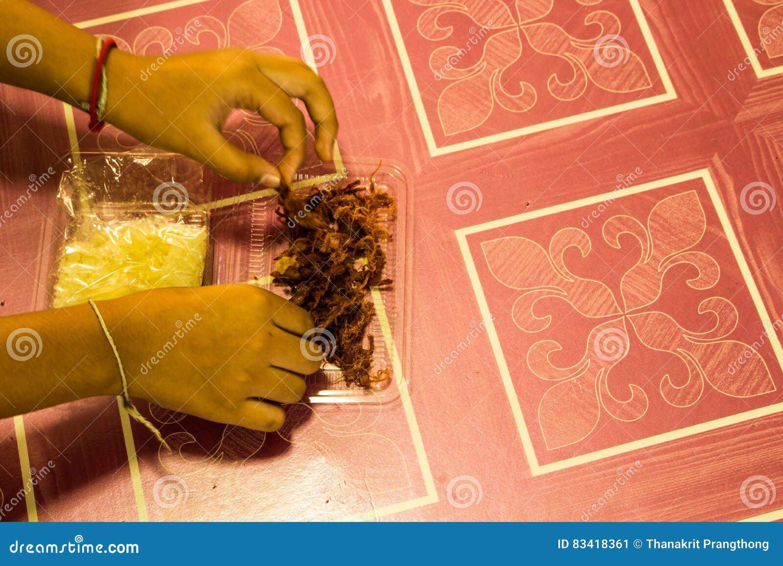 Carne di maiale affettata croccante della mano