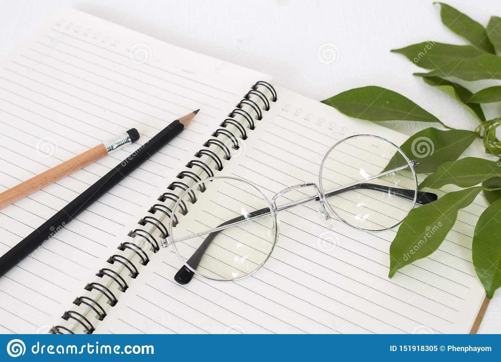 Carnet pour le mémorandum avec le crayon, lunettes