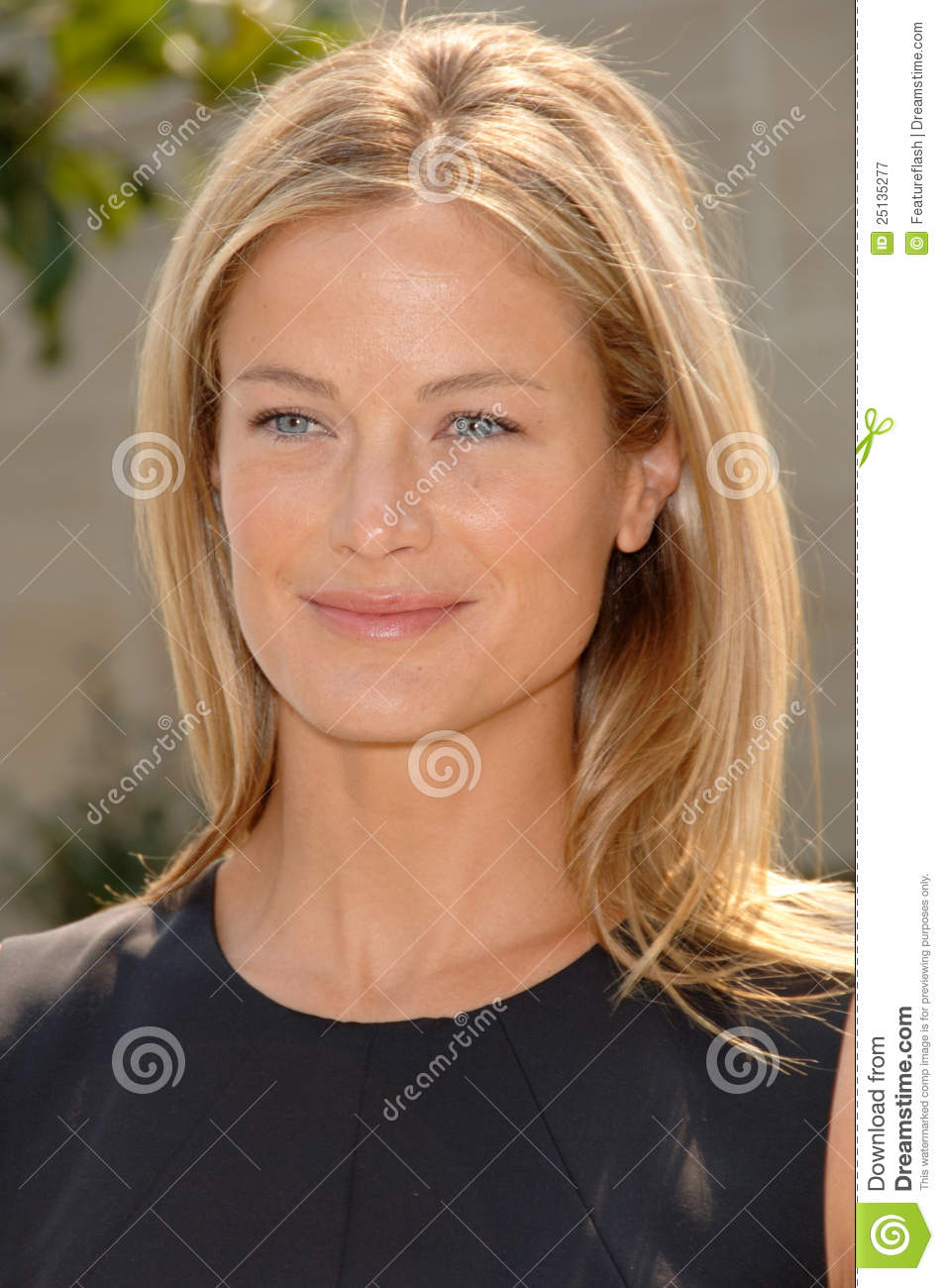 carolyn murphy editorial photography image 25135277 lunch clipart images lunch clip art free images
