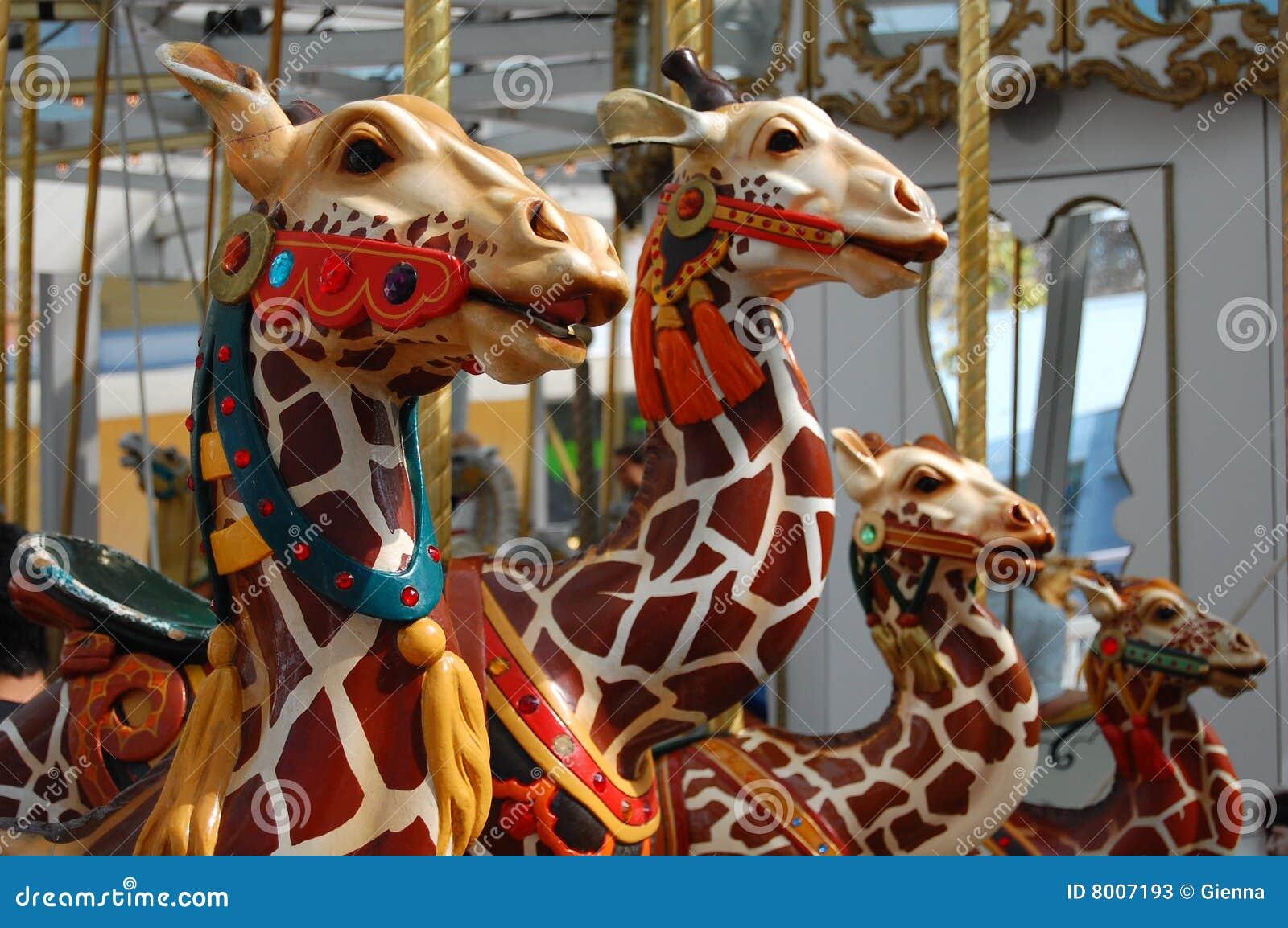 carousel animals stock photos image 8007193