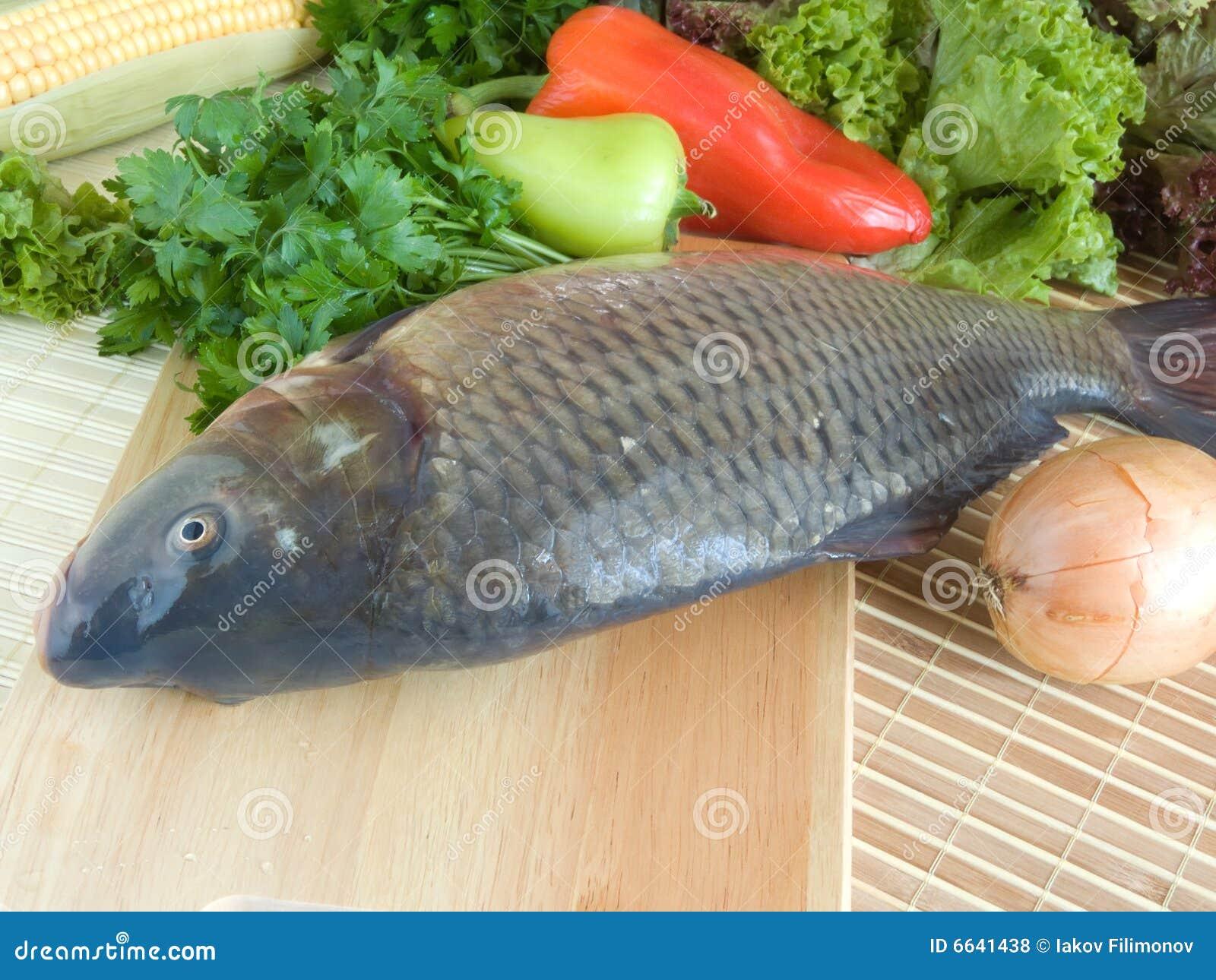 Carp Fish Royalty Free Stock Photos - Image: 6641438