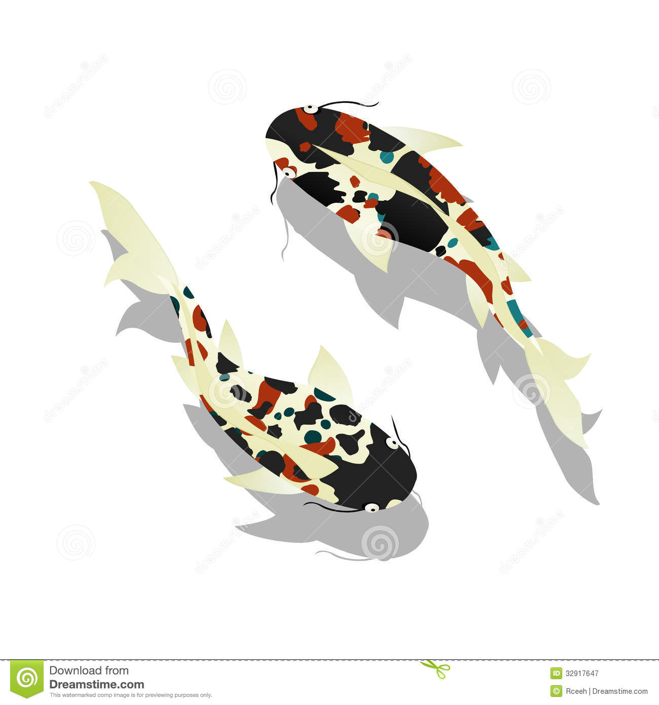 Carp koi fish royalty free stock photography image for Koi fish vector