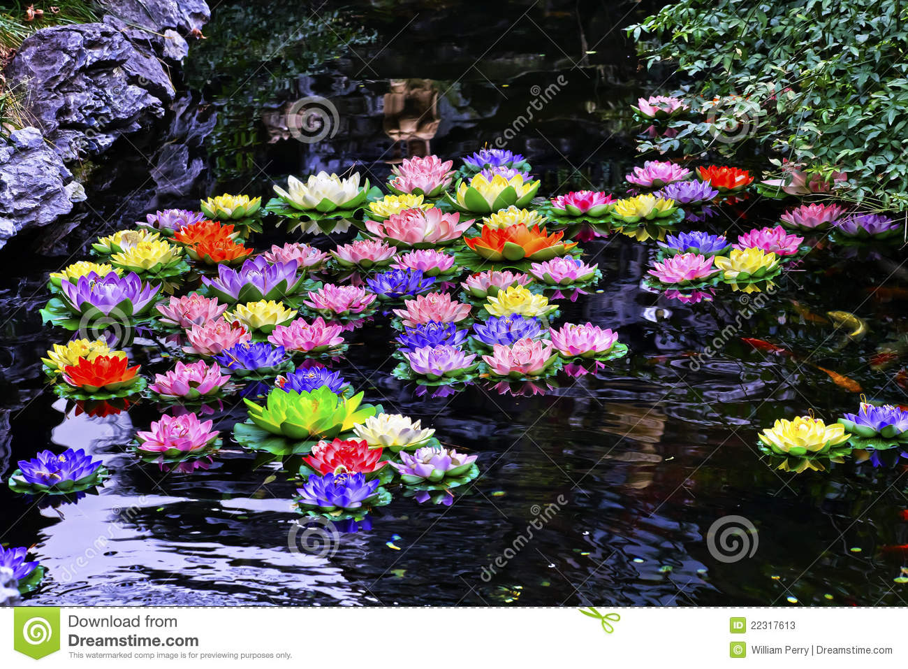 Carp pond artificial water lillies shanghai stock photos for Artificial pond water