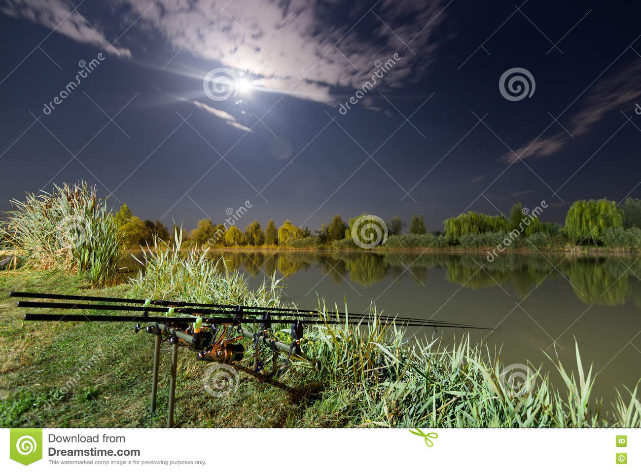 Carp spinning reel angling rods on pod standing night for Fishing rod sun and moon