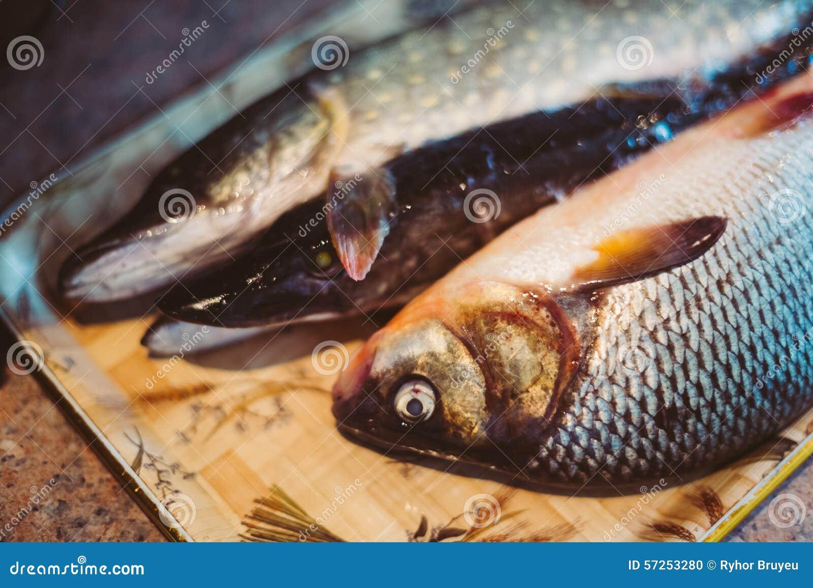 Carpa e lucci crudi del pesce di acqua dolce fotografia for Pesce pulitore acqua dolce fredda