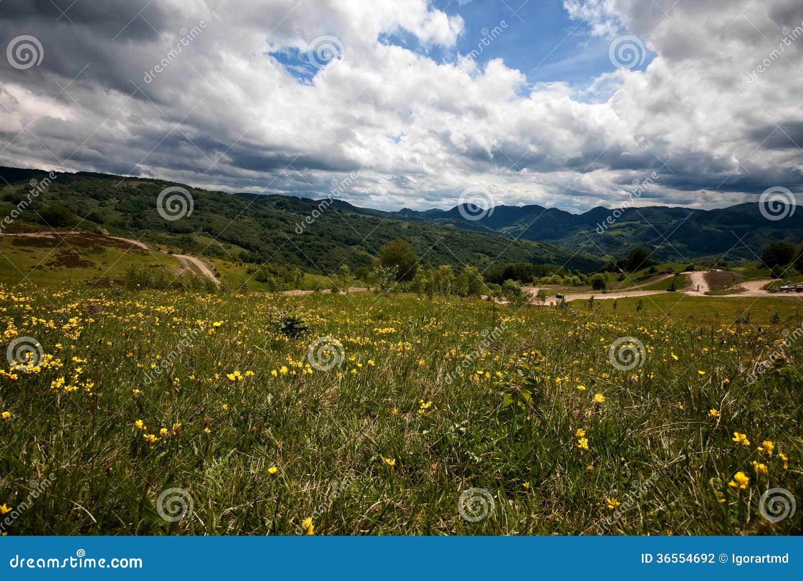 Carpathian berg