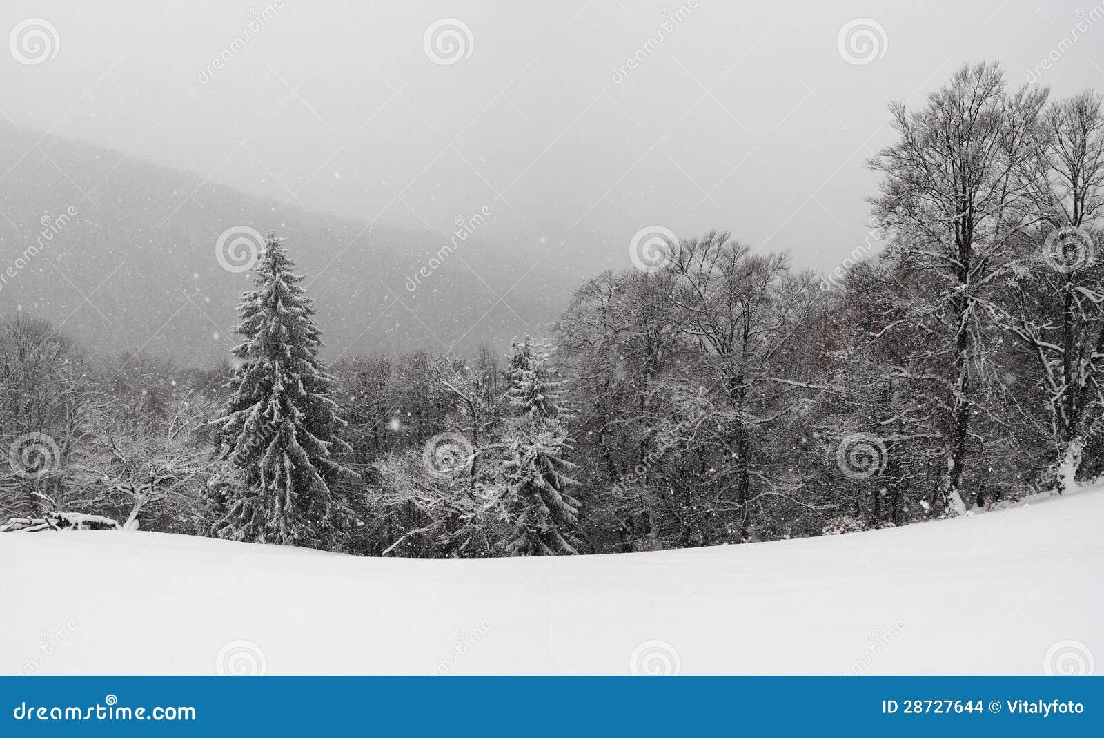 Carpathians το χειμώνα