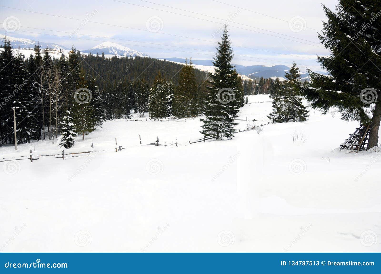 Carpathians χειμώνας