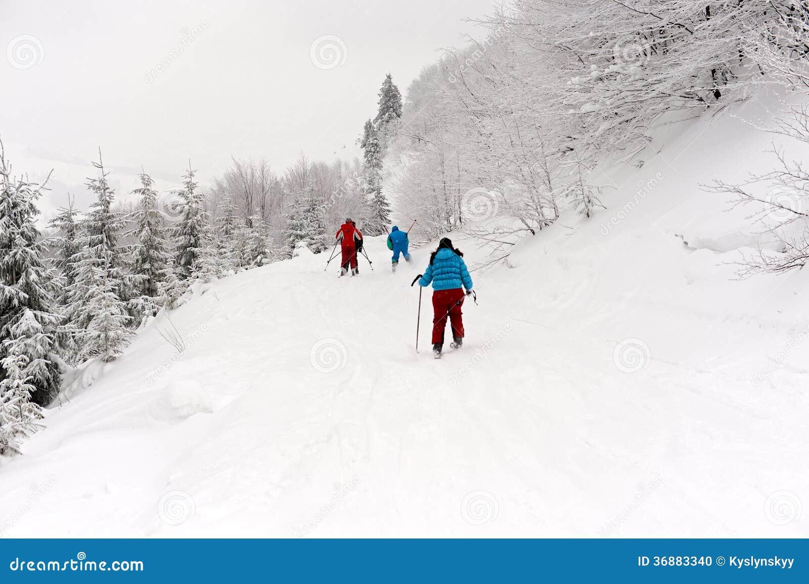 Download Carpathians fotografia stock. Immagine di skiers, paesaggio - 36883340