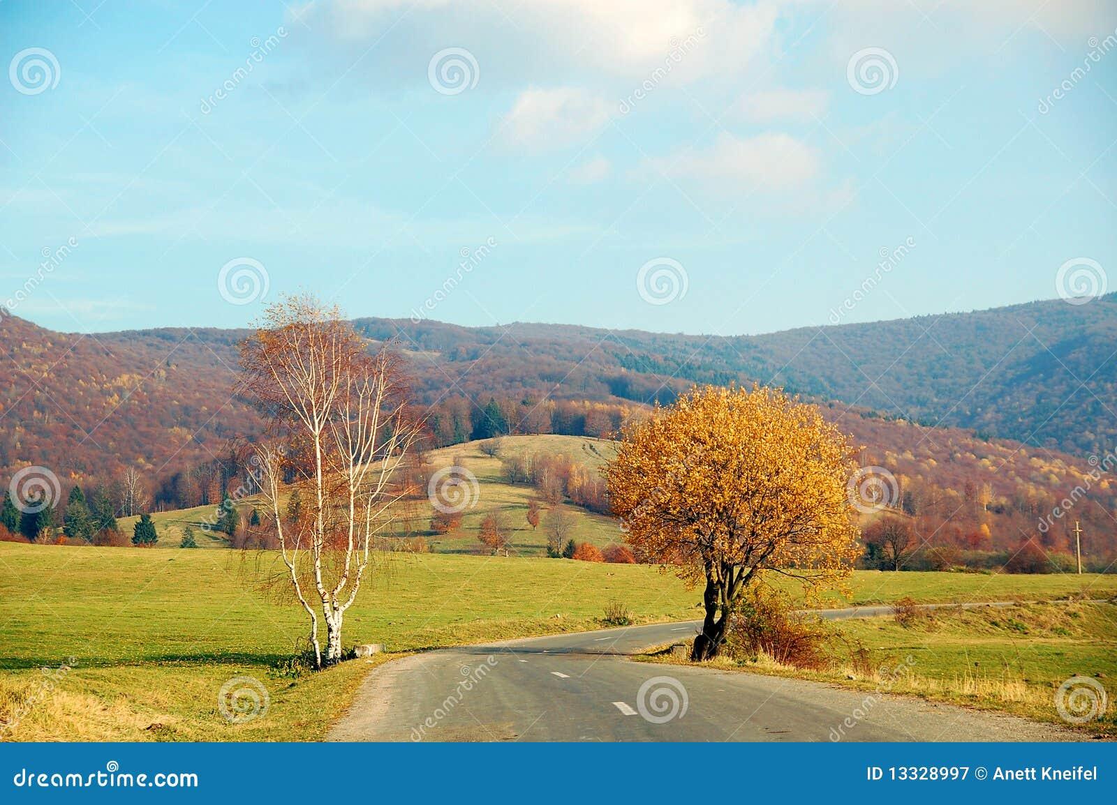 Carpathians drogowi