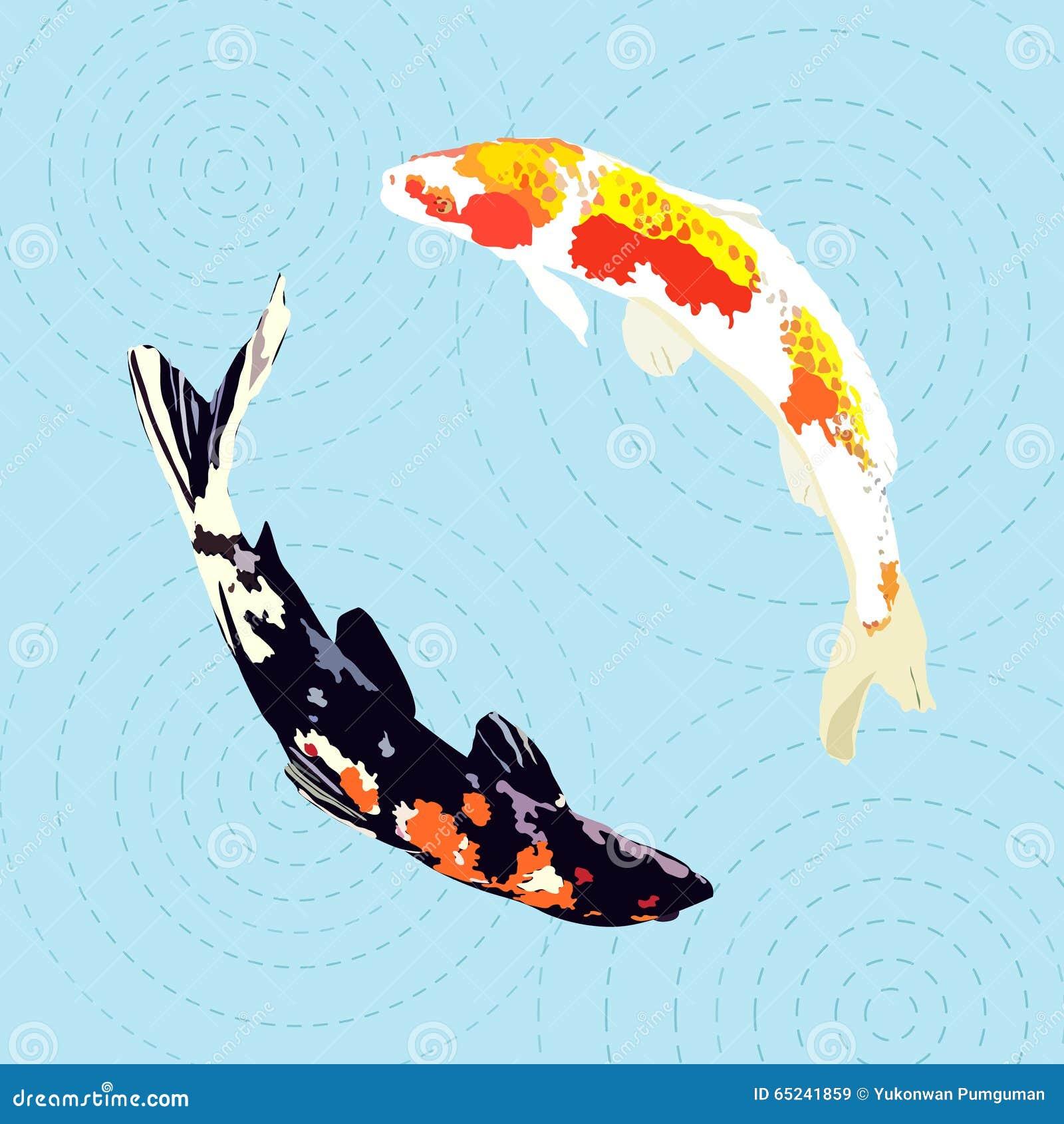 Carpe chinoise poisson japonais de koi illustration de for Carpe chinoise prix