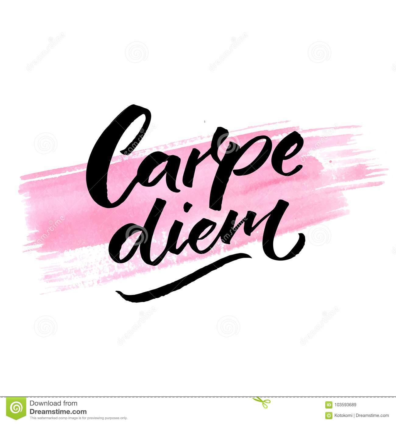 Carpe diem definition francais