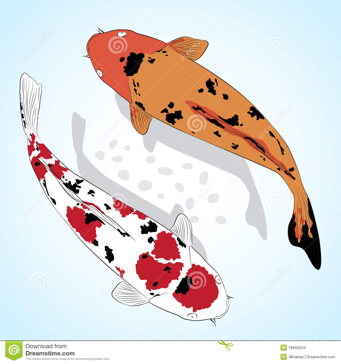 Carpe poissons de koi images stock image 18955044 for Poisson rouge koi
