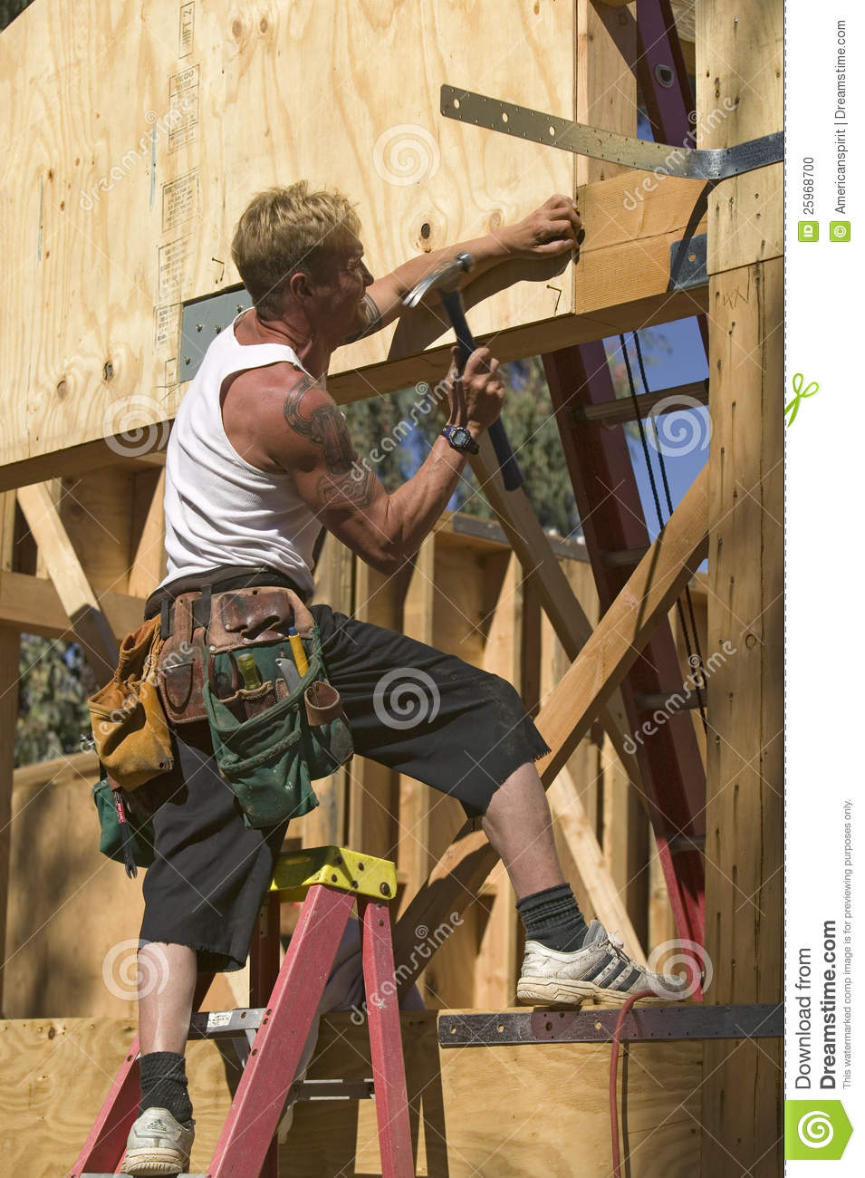Carpenter editorial image. Image of male, structure ...