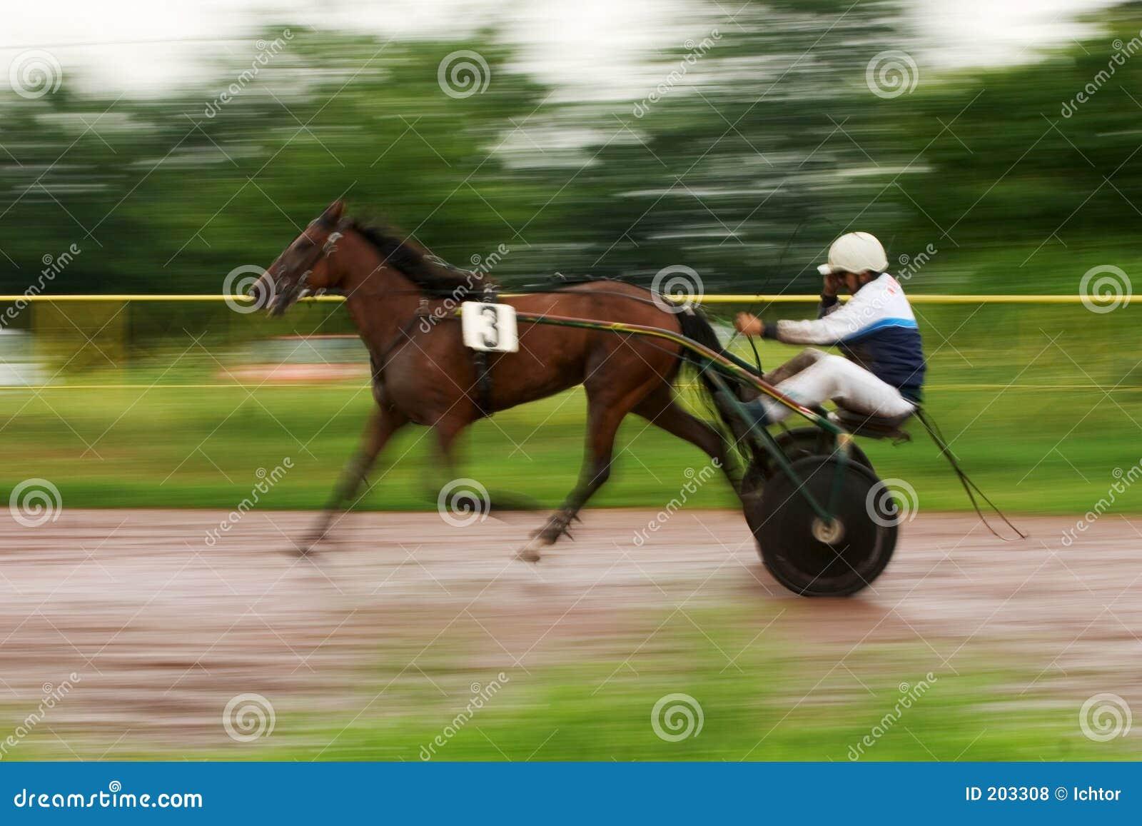 Carrello e puleggia tenditrice del cavallo