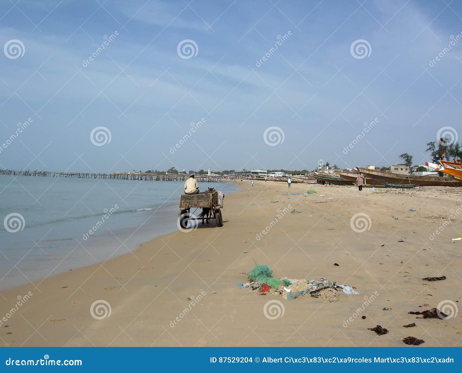 Carreta croisant la plage du Sénégal