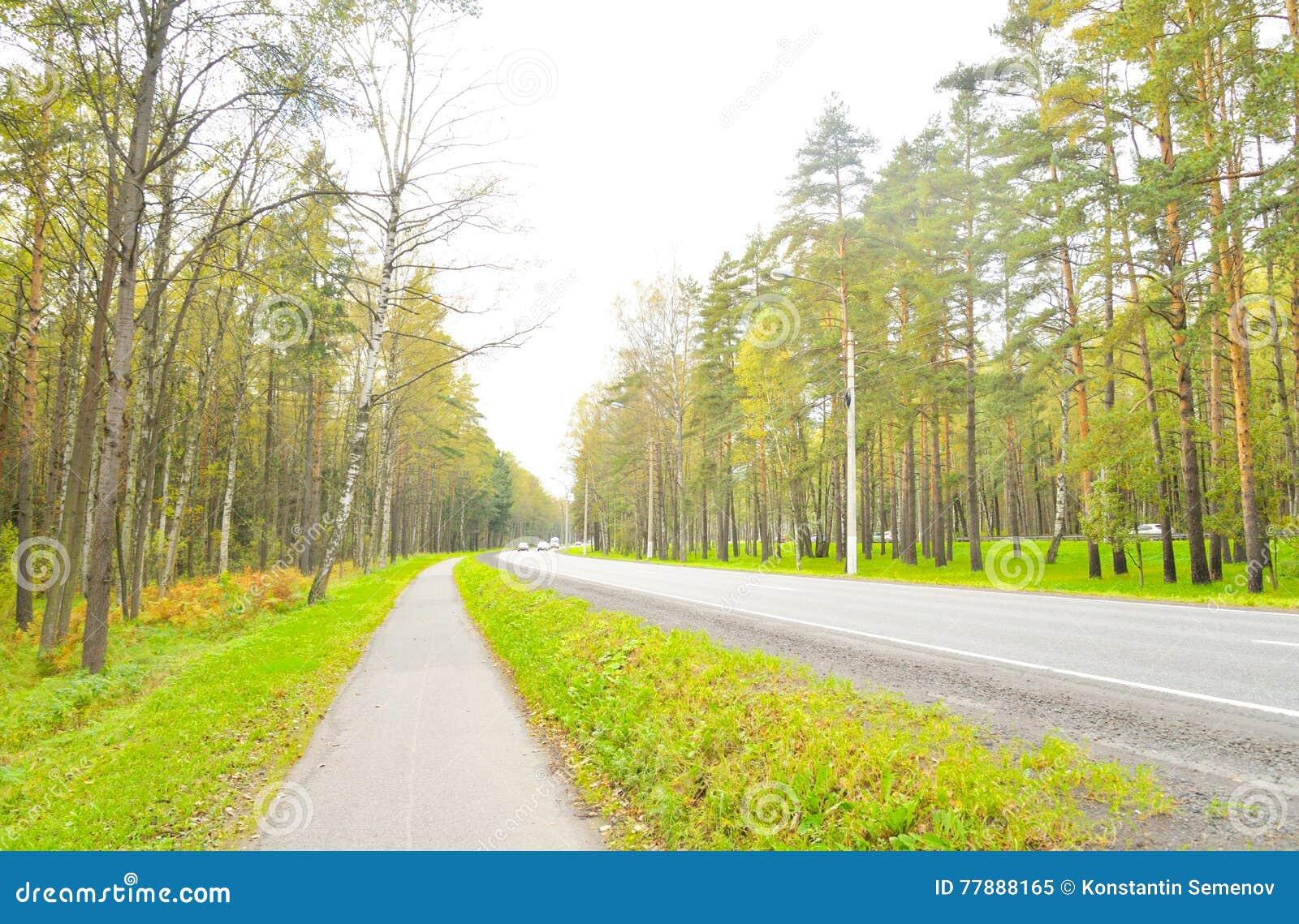Carretera De Primorskoe En StPetersburg Foto de archivo