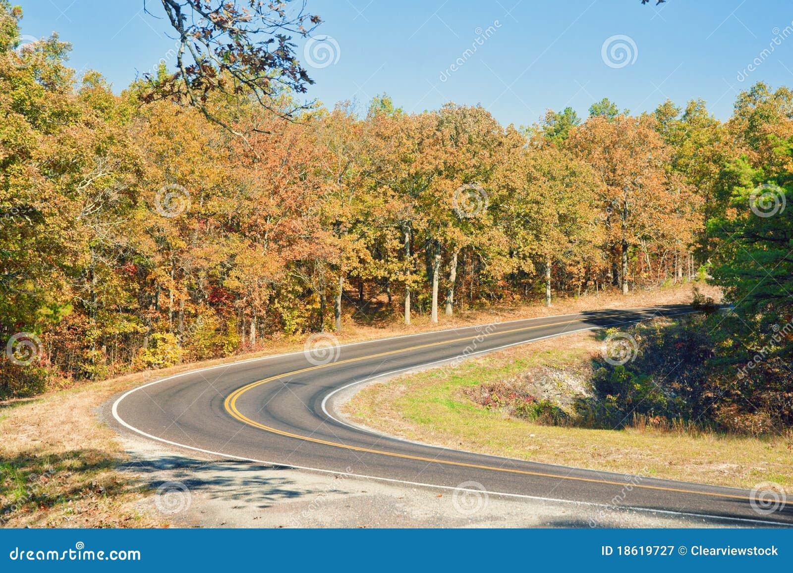 Carretera del otoño o de la caída