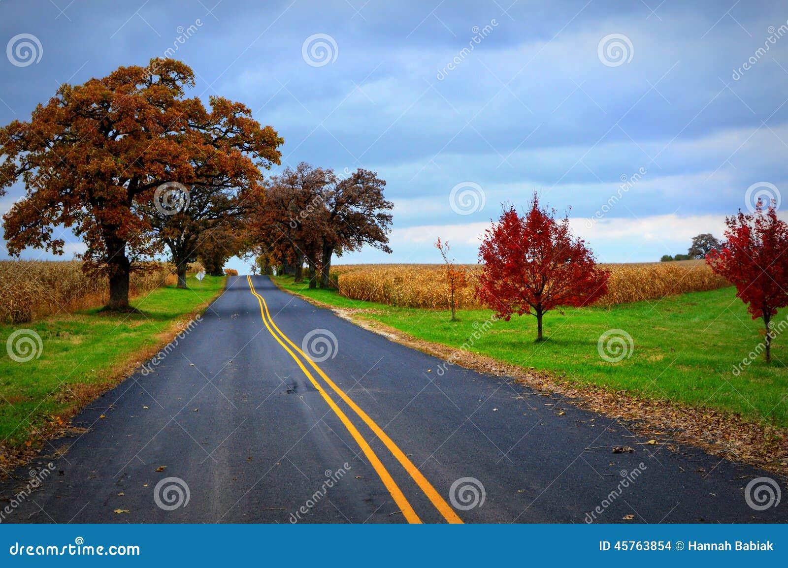 Carretera nacional, colores de la caída, campos de maíz
