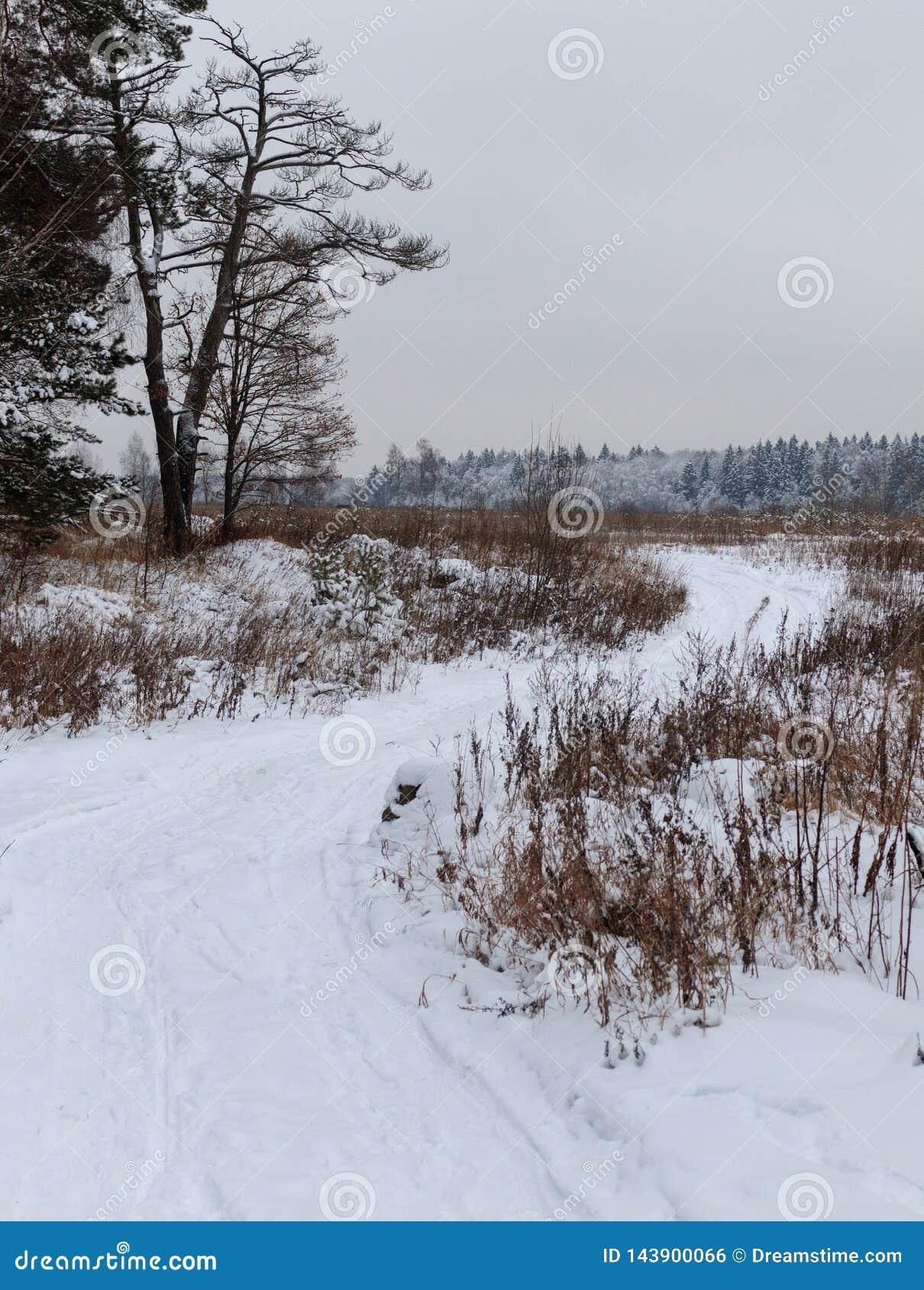 Carretera nacional en invierno