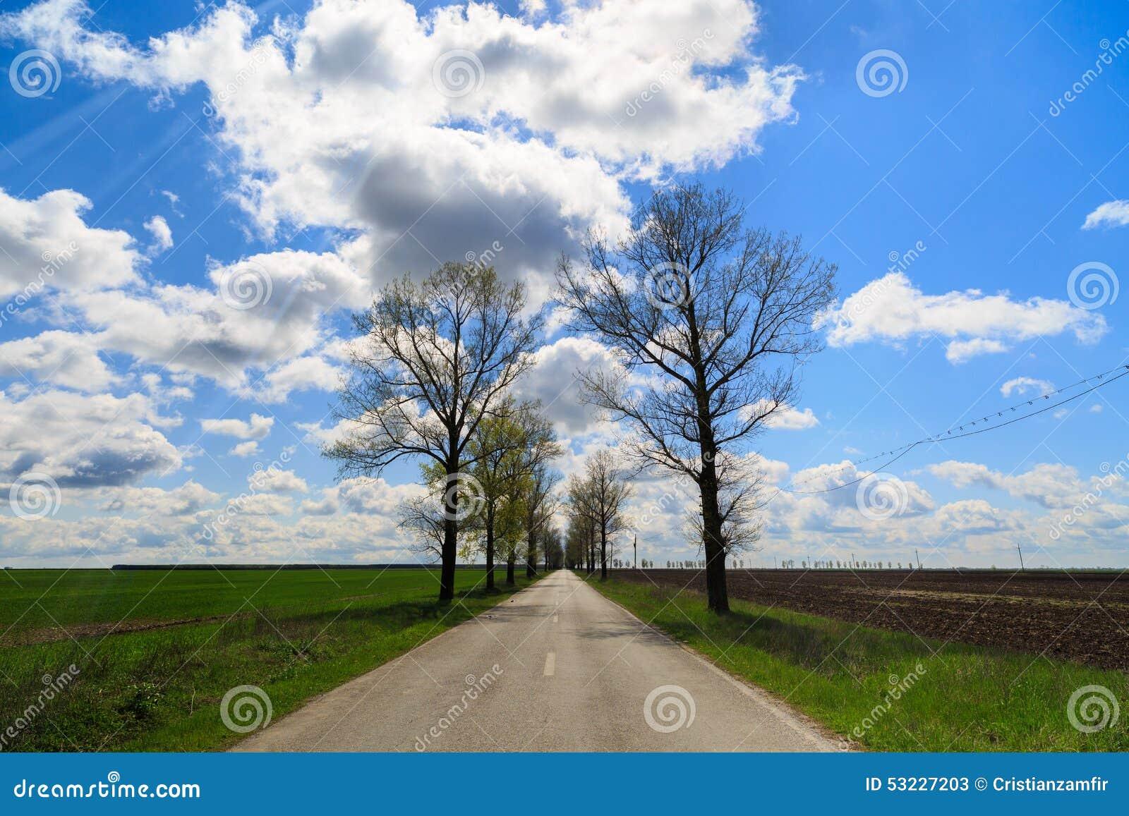 Carretera nacional en un campo