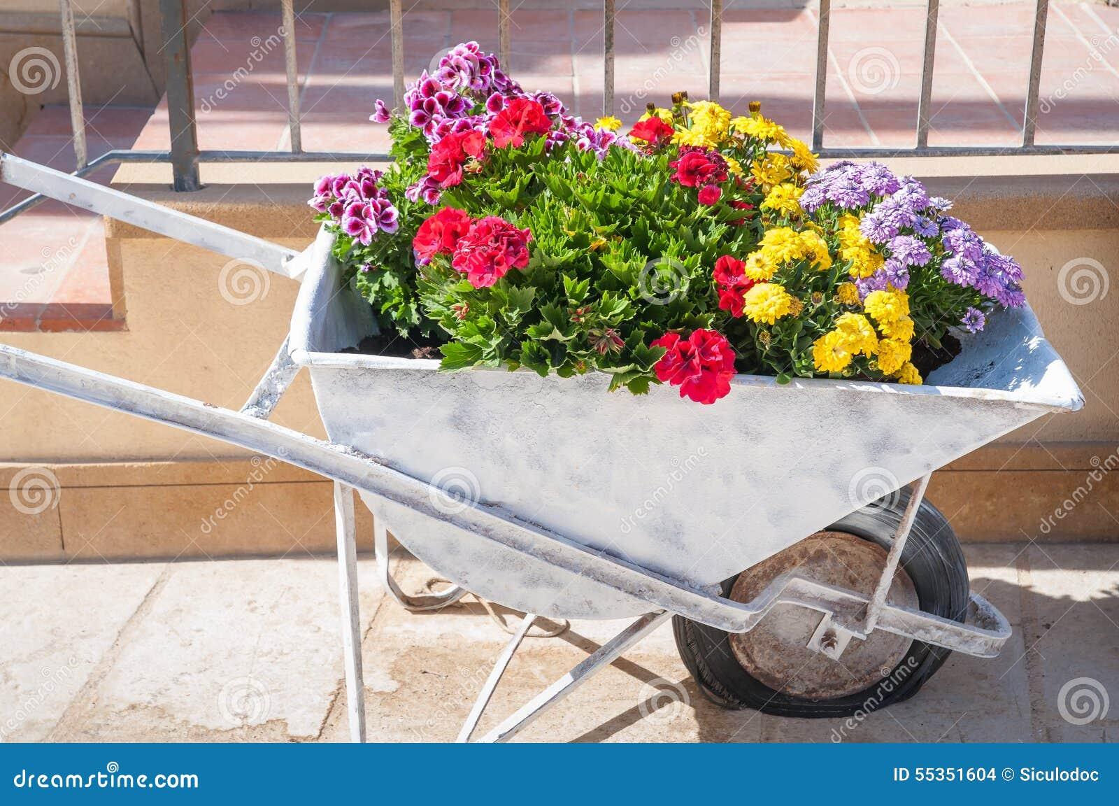 Carretto fiorito di spinta