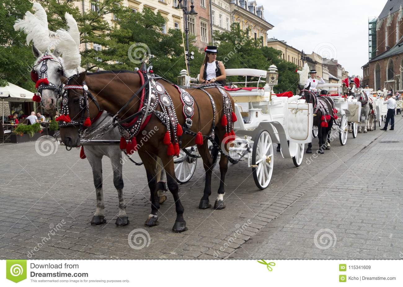 Carriage with horses in Krakow square