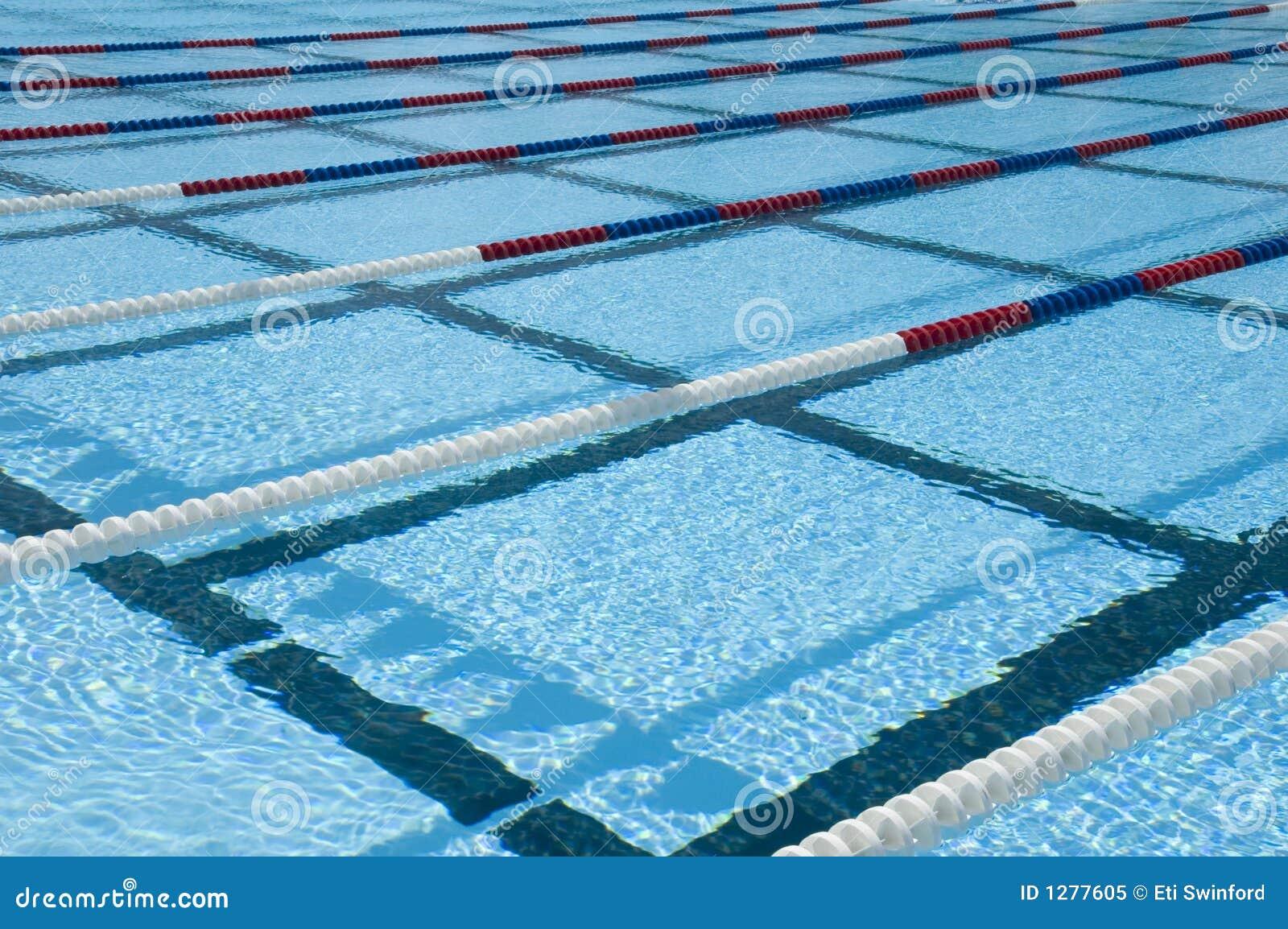 Carriles de la piscina foto de archivo libre de regal as imagen 1277605 - Business plan piscina ...