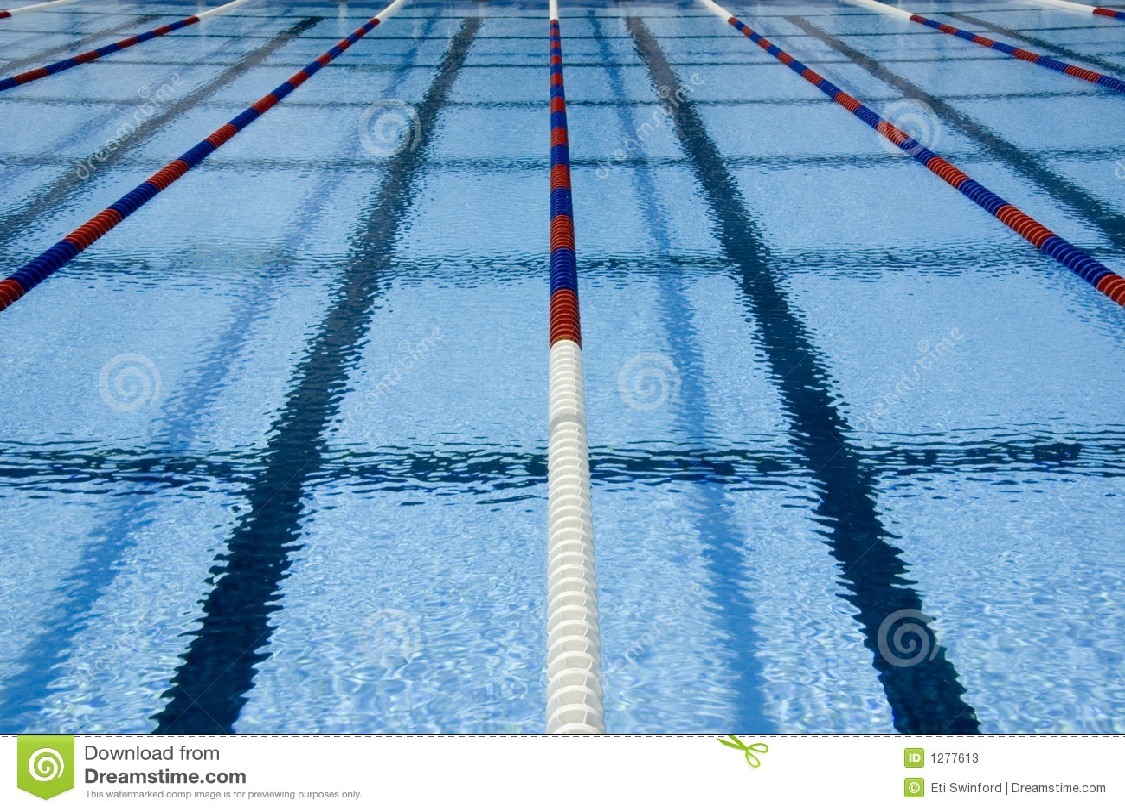 Carriles de la piscina fotos de archivo imagen 1277613 - Business plan piscina ...