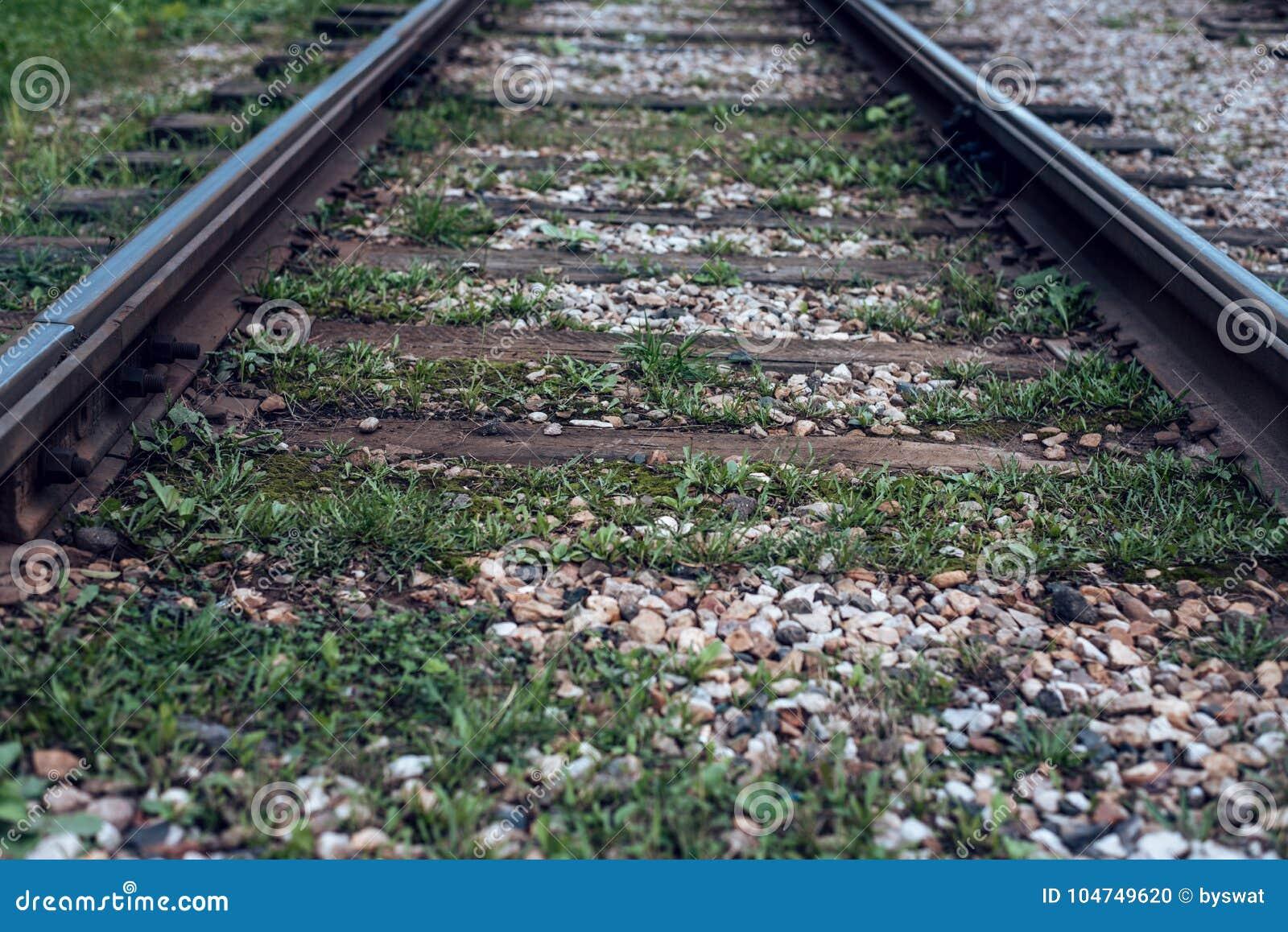 Carriles viejos de la tranvía, primer, otoño del verano, entre los durmientes hierba, grava y piedras en la ciudad