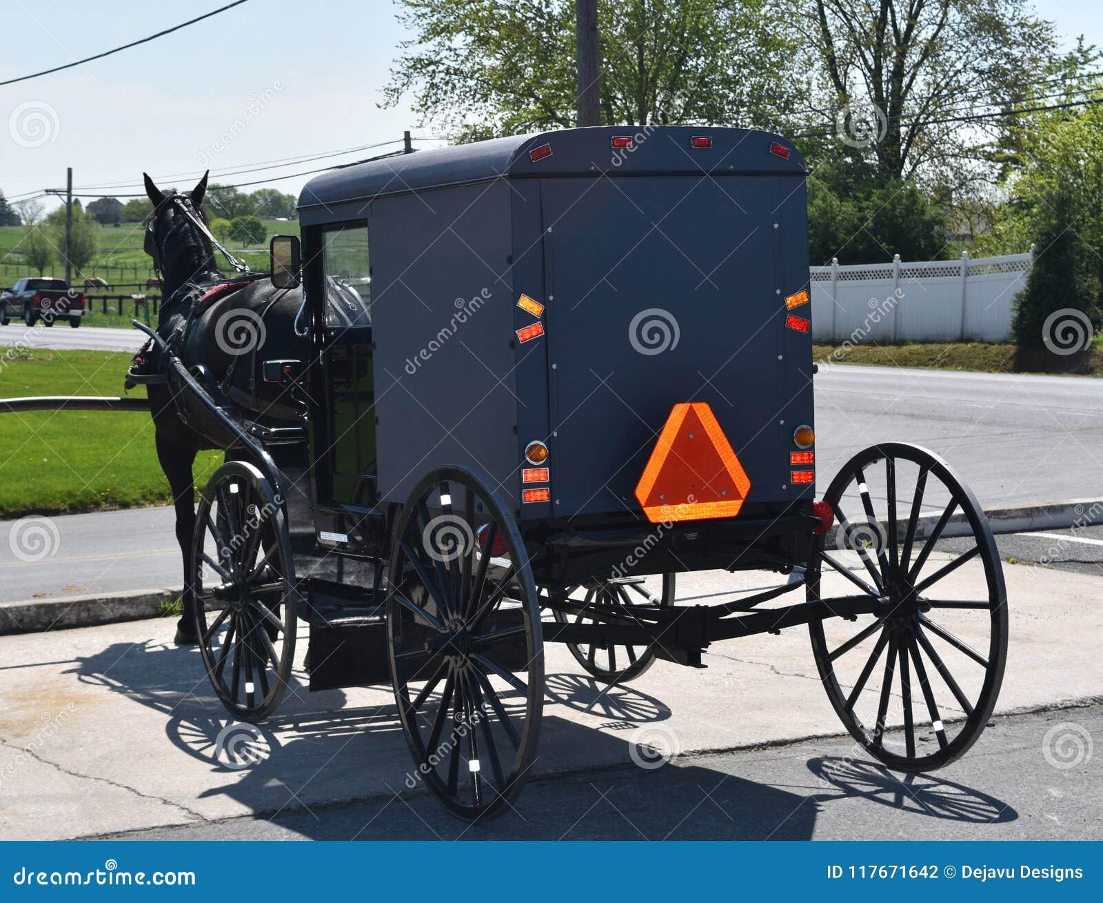 Carrinho puxado a cavalo de Amish estacionado em uma loja
