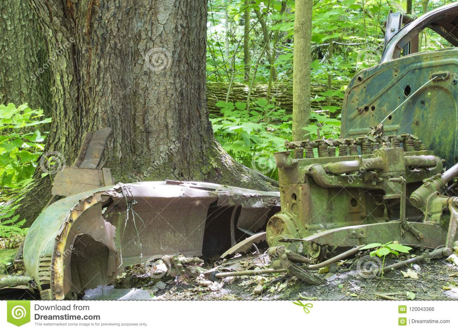Carro abandonado velho na floresta